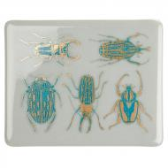 Fusible Decals, Scarabs, Turquoise-Gold 2-Color