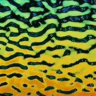 Dichroic on Black Opalescent, Rainbow, Soft Ripple Texture, 3 mm, Fusible, 3x3 in.